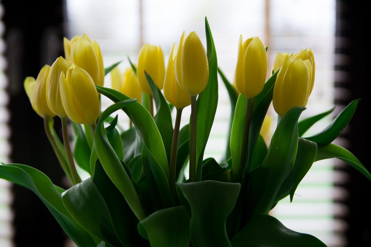 Święta Wielkanocne – dlaczego dla mnie to czas wspomnień o bliskich, których już nie ma?
