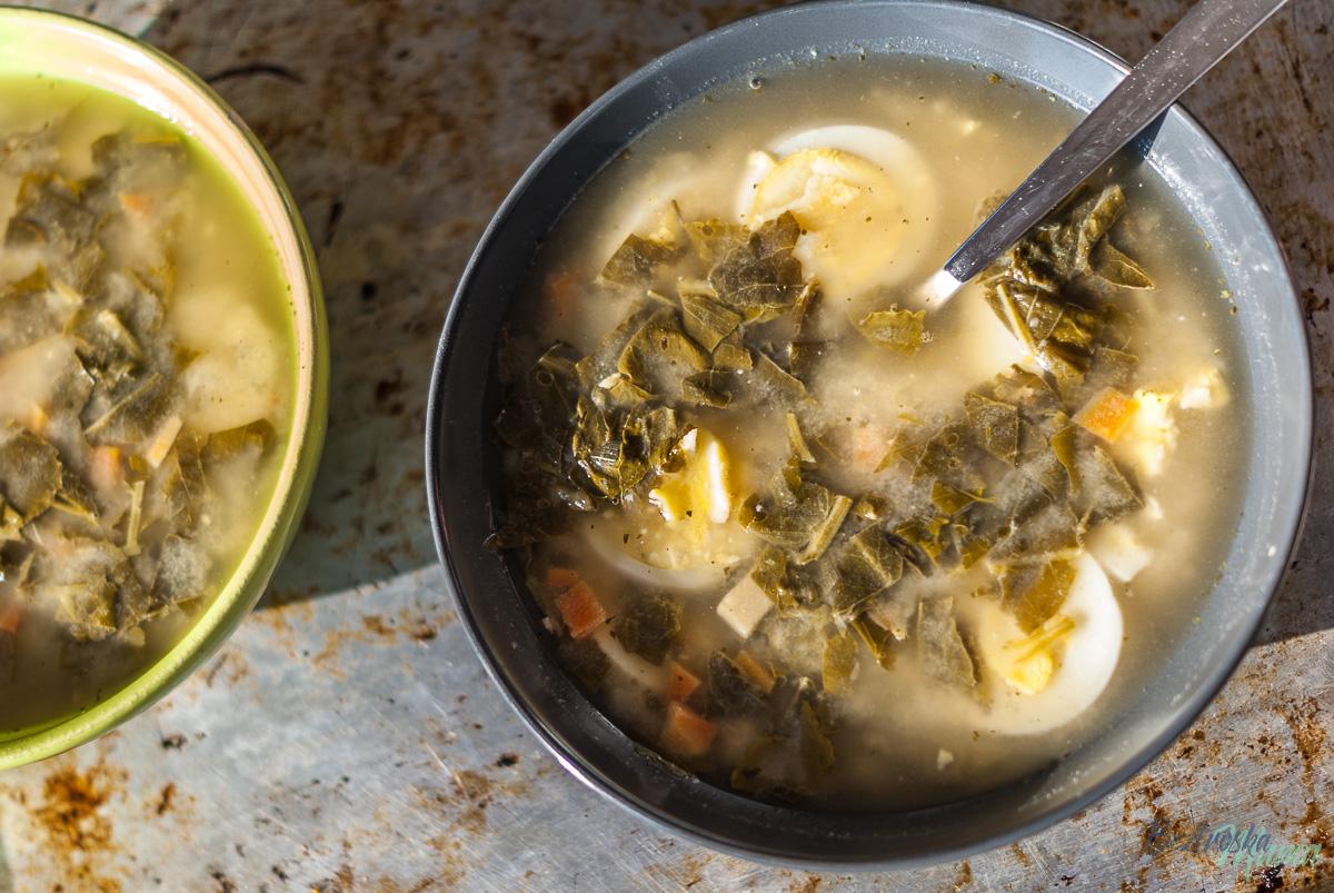 Zupa szczawiowa FIT – zdrowy przepis na danie z dzieciństwa